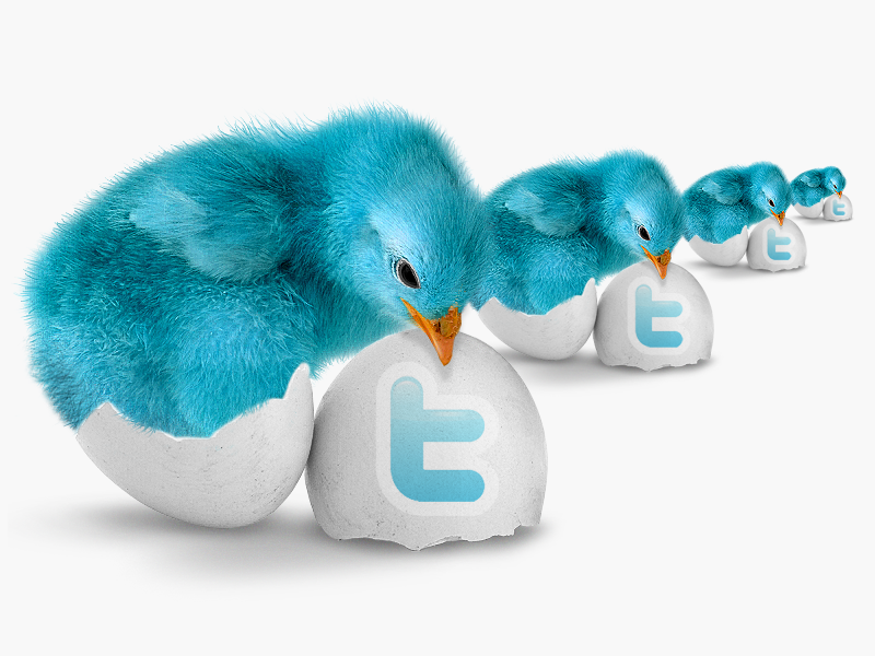Tips for Improving Your Twitter Presence